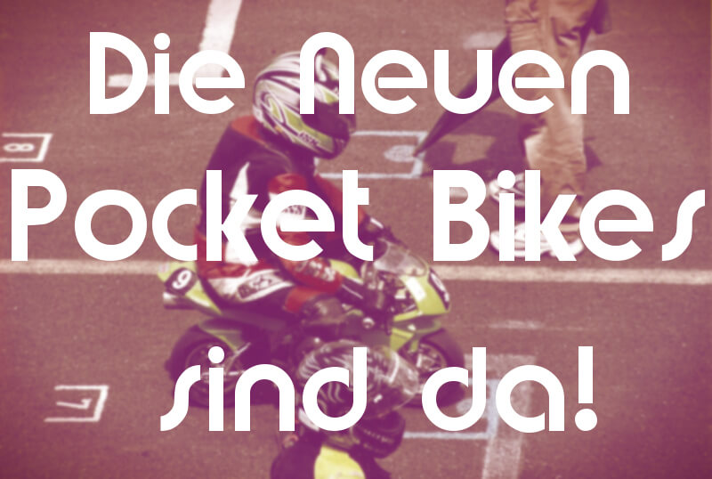 Pocket Bike Kaufen
